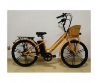 Электровелосипед Pioneer Neoclassic